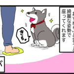 【漫画】犬ずわり、柴犬の変わった座り方。座り方の癖と原因、対策は?