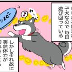 【漫画】寝る子は育つ、柴犬の変わった寝姿。犬の睡眠時間は?なぜ長く眠るのか。