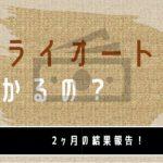 【2ヶ月目】FX初心者がトライオートFXで50万円で運用してみた実績公開【FX自動売買】